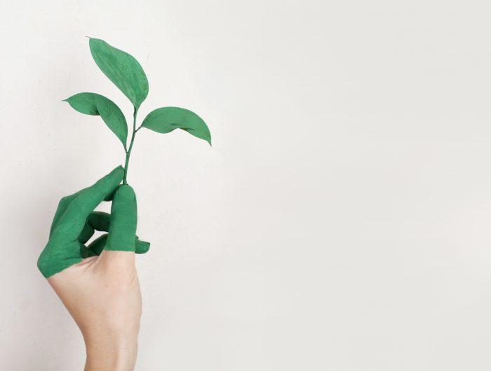Conférence environnementale 2014 : coup d'accélérateur pour la transition écologique