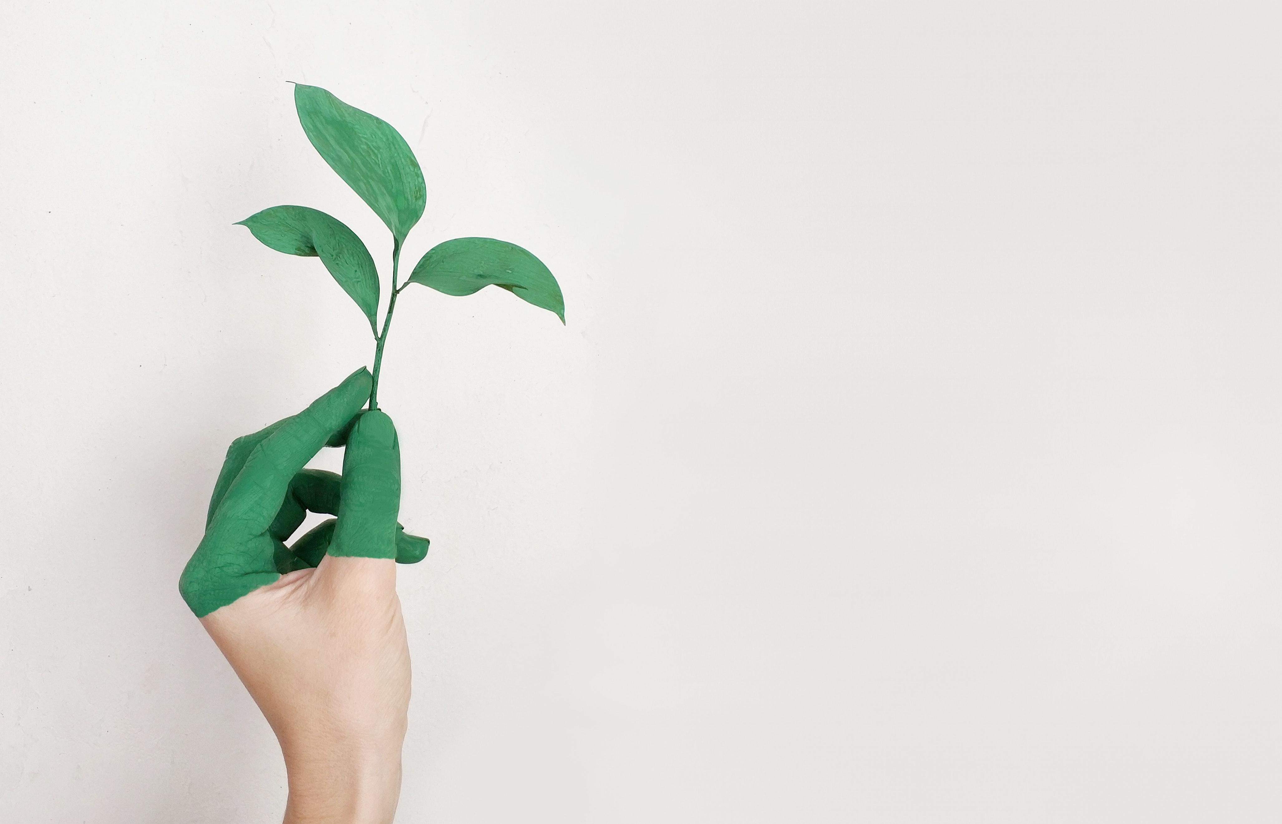 Covid-19 N° 5 : la biodiversité est bonne pour la santé