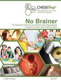 Produits chimiques et développement cérébral de l'enfant: le rapport de CHEM Trust
