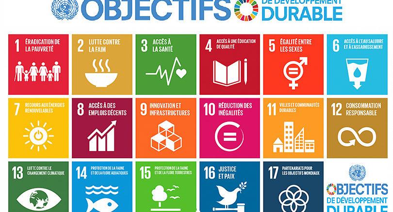 WECF va démarrer en juin 2017 un projet de 3 ans de promotion de la mise en œuvre des ODD, auprès du grand public, de la société civile et des pouvoirs publics.