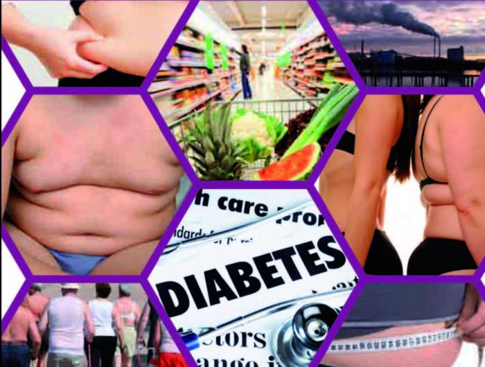 Dépliant – Les liens entre exposition chimique et risques d'obésité et de diabète – 2012
