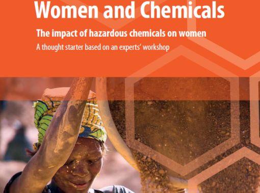 """Synthèse du rapport  L'impact des produits chimiques dangereux sur les femmes (""""Women and chemicals"""")"""