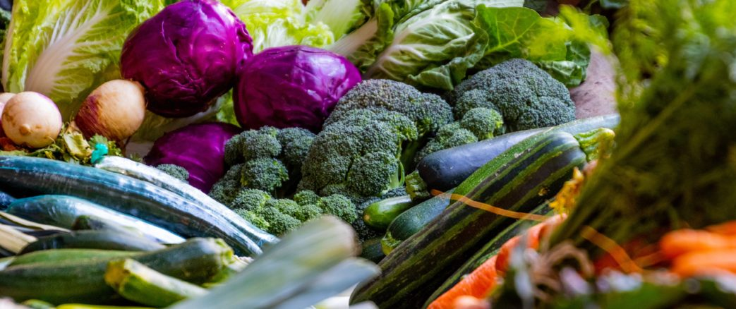 WECF participe aux Etats Généraux de l'Alimentation – 29 août au 29 novembre