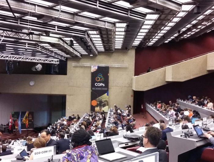 Conventions chimiques internationales : des outils méconnus pour protéger la santé et l'environnement
