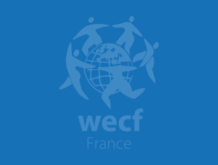 Contribution – Enquête de la Commission européenne sur l'usage durable des biocides – 2014