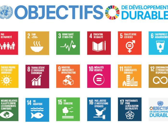 Les Objectifs de Développement Durable :  4 ans après, un premier bilan mitigé
