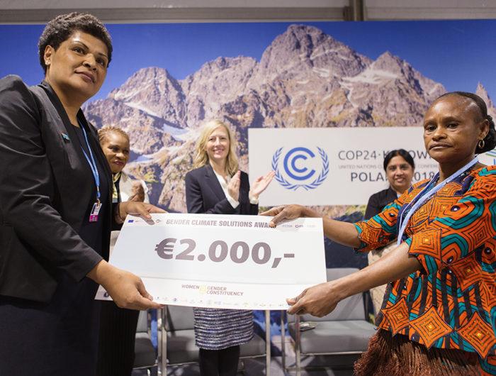 RECHERCHONS Solutions Genre et Climat! Soumettez votre projet aujourd'hui et venez le présenter à la COP25!