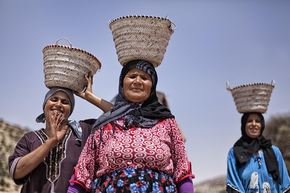 Femmes et transition énergétique au Maroc