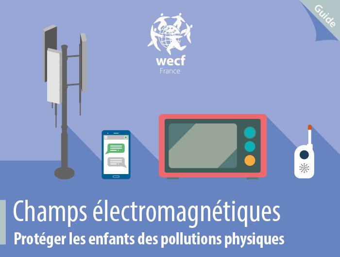 Guide Champs Electromagnétiques