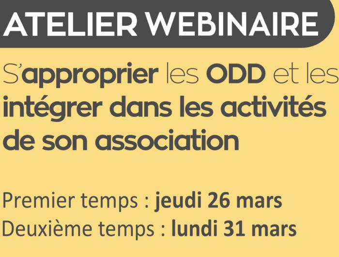 Récap' de l'atelier webinaire du 26 et 31 mars sur l'appropriation des ODD et leur intégration dans les activités associatives